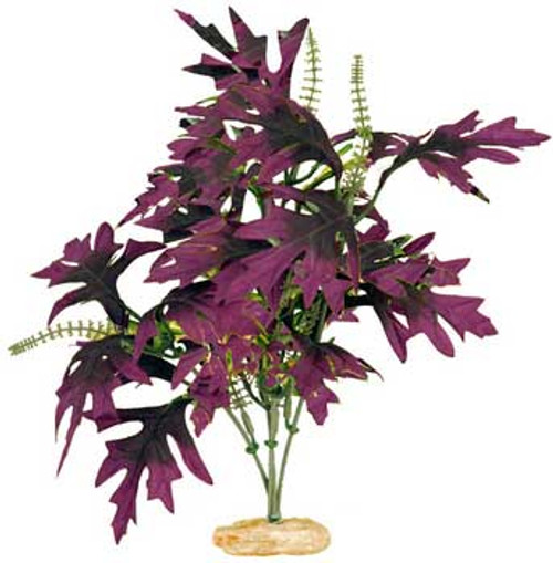 Blue Ribbon Colorburst Florals Amazon Butterfly Leaf With Buds 7-8in