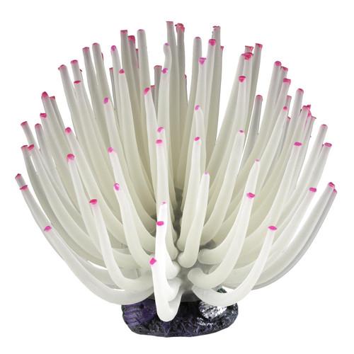 Tetra White Anemone, Blooming Aquarium Decoration