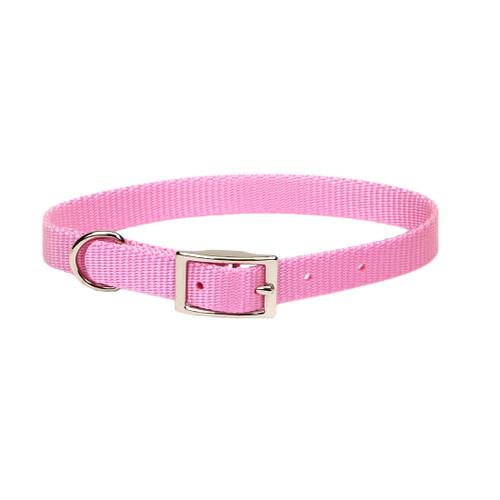 Coastal Single-ply Nylon Collar Bright Pink 5/8x16in