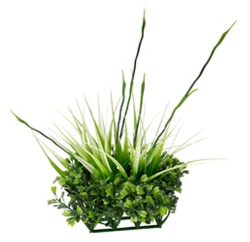 Fluval Chi Boxwood & Tall Grass Ornament {requires 3-7 Days before shipping out}