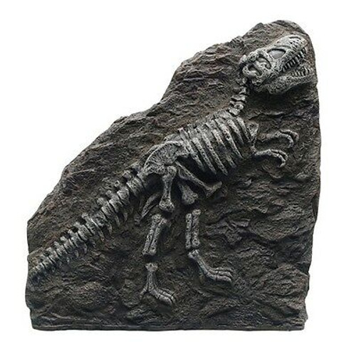 """Exo Terra Fossil Ornament T-Rex Hagen products ship in 5-7 days"""""""