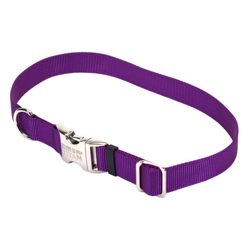 Coastal Adjustable Nylon Collar With Titan Metal Buckle Purple 1x18-26in