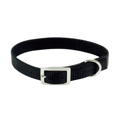 Coastal Single-ply Nylon Collar Black 3/8x10in