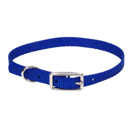 Coastal Single-ply Nylon Collar Blue 3/8x10in