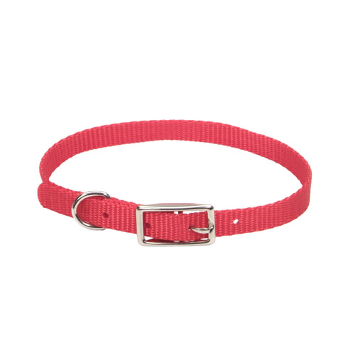 Coastal Single-ply Nylon Collar Red 3/8x10in