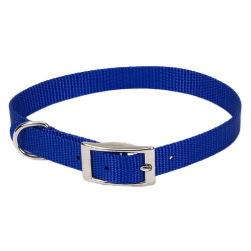 Coastal Single-ply Nylon Collar Blue 5/8x12in