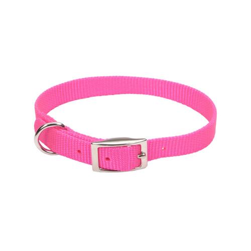 Coastal Single-ply Nylon Collar Neon Pink 5/8x12in