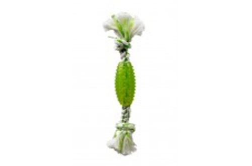 Multipet Canine Clean Spearmint Rope With TPR Tube 6in