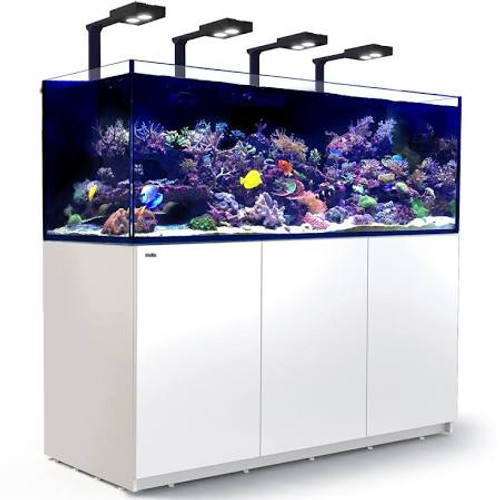 The Advanced Features Of Our Reefer Line Including New And Improved Sumps And Cabinets, These New Models Are Constructed To Quality Standards That Are World Class And Provide An Ideal Solution For Any Hobbyist Looking For A Larger, More Sophisticated Reef