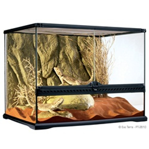 Exo Terra Glass Terrarium 24x18x18 {requires 3-7 Days before shipping out}