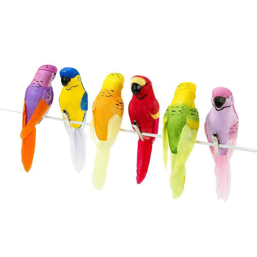 Carnival Fiesta Tropical Birds