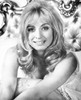 30 Is A Dangerous Age Cynthia Suzy Kendall 1968 Photo Print - Item # VAREVCMCDTHISEC187H