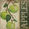 Green Apples Poster Print by Jennifer Pugh - Item # VARPDXJP1522