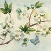 Cherry Bloom II Poster Print by  Pamela Gladding - Item # VARPDXRB10607PG