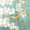 Spring Dream VI Poster Print by  Danhui Nai - Item # VARPDX24930