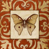 Moroccan Butterfly II Poster Print by Patricia Pinto - Item # VARPDX8425K