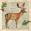 Lodge Collage III Poster Print by  Katie Pertiet - Item # VARPDX24135
