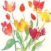 Jardin de Plantes II Poster Print by Julie Paton - Item # VARPDXPAT103