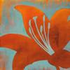 Cosmic Bloom II Poster Print by Stacy DAiguar - Item # VARPDXDSP107
