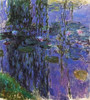 Willow Fronds And Nympheas Poster Print by  Claude Monet - Item # VARPDX373874