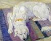 Liegender Hund - Hundeportrat Poster Print by  Franz Marc - Item # VARPDX265158