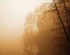 Fog on Shelly Lake I Poster Print by Alan Hausenflock - Item # VARPDXHSF019
