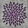Plum Star Burst 1 Poster Print by Dennis Dascher - Item # VARPDX420DAS1072