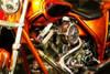 Wild Ride II Poster Print by Alan Hausenflock - Item # VARPDXPSHSF1064