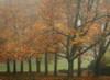 Colors in the Mist VIII Poster Print by Vitaly Geyman - Item # VARPDXPSVIT419