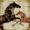 Horses I Poster Print by Dan Meneely - Item # VARPDX8681D
