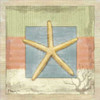Montego Starfish Poster Print by Paul Brent - Item # VARPDXBNT214