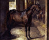 Anglo-Arabian Stallion In The Imperial Stables at Versailles Poster Print by  Theodore Gericault - Item # VARPDX264916