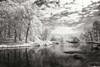 Youngs Pond Poster Print by Alan Hausenflock - Item # VARPDXPSHSF1280