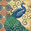 Peacocks Splendor I Poster Print by Paul Brent - Item # VARPDXBNT532