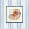 Sanibel Shell III Poster Print by Avery Tillmon - Item # VARPDX8914