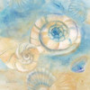Watercolor Shells I Poster Print by Cynthia Coulter - Item # VARPDXRB7428CC