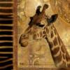 Elegant Safari III-Giraffe Poster Print by Patricia Pinto - Item # VARPDX6853C