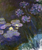 Water Lilies and Agapanthus Poster Print by  Claude Monet - Item # VARPDX278727