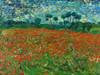 Poppy field Poster Print by Vincent Van Gogh - Item # VARPDX3VG1539