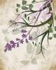 Lavender and Sage II Poster Print by Jennifer Pugh - Item # VARPDXJP1641