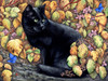 Autumn Colours Poster Print by Irina Garmaschova-Cawton - Item # VARMGL601362