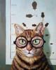 Feline Cat Exam Poster Print by Lucia Heffernan - Item # VARPDXH1247D