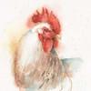 Farm Friends V Poster Print by Lisa Audit - Item # VARPDX26536