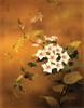 Tropical Flower Poster Print by Haruyo Morita - Item # VARMGL601218
