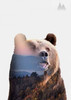 Bear Poster Print by Clean Nature - Item # VARPDXIN32110