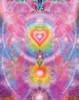 Sunset Orchid Poster Print by Alixandra Mullins - Item # VARMGL601044