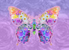 Purple Floral Buttefly Poster Print by Alixandra Mullins - Item # VARMGL601095