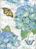 Garden Hydrangea II Poster Print by Julie Paton - Item # VARPDXPAT151