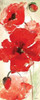 Watercolor Red Poppies Panel I Poster Print by Tre Sorelle Studios - Item # VARPDXRB11244TS