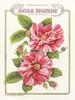 Rosa Mundi Poster Print by Gwendolyn Babbitt - Item # VARPDXBAB351